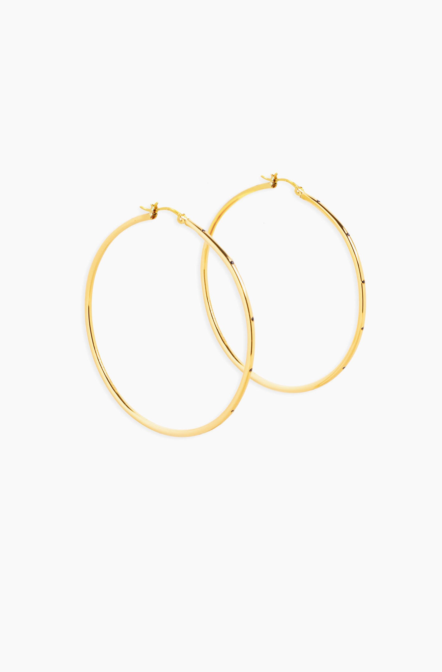 Pincatch Hoop Earrings